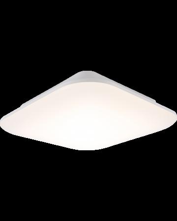 Surf Series Ceiling Mount - 14