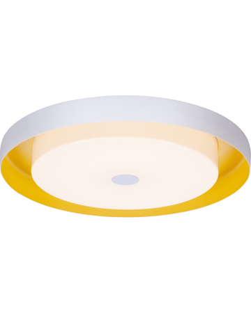 Sunny Side Series Ceiling Mount - 17