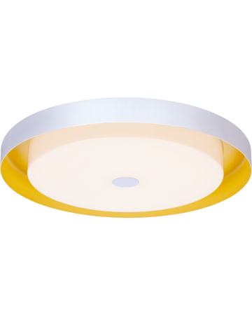 Sunny Side Series Ceiling Mount - 21
