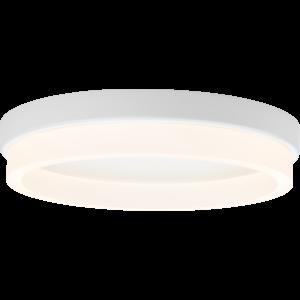 Anello Series Ceiling Mount - 14